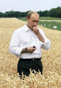 Mr President, 13 августа 1986, Санкт-Петербург, id35652513